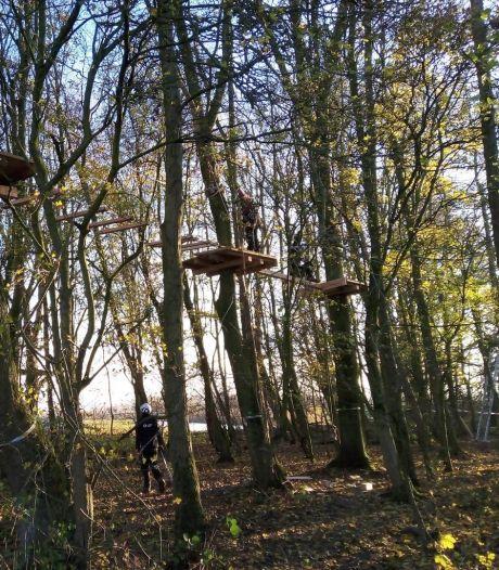 Vanaf het voorjaar klimmen en ziplinen door de Biesbosch in Dordt: 'Zonder de natuur te belasten'