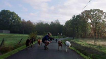 """PREVIEW. Didier ging van straathoekwerker naar hondentrainer: """"Het is begonnen als een joke"""""""