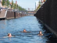 Niet zwemmen in de haven, maar ook geen duik in het Hollandsch Diep