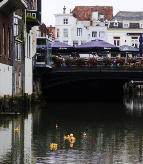 Dordtse Voorstraathaven verrijkt met dobberende eendjes dankzij 'kunstenaar Ichi Go'