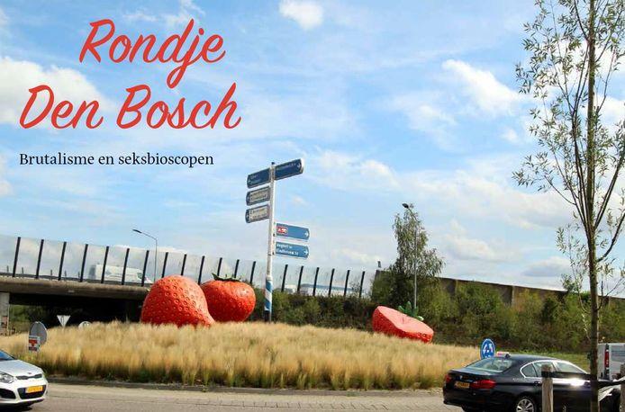 Rondje Den Bosch bij de Treurtrips