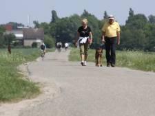 Wandelen in Zevenbergen: toeterende auto's rijden je van je sokken