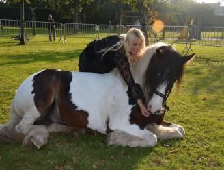 """""""Twee jaar nodig gehad om paard te leren liggen"""""""