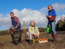 Besluit over landgoed Gildebosch in Waalre uitgesteld