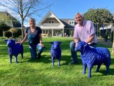 Als je de blauwe schapen van Janny en Bernhard eenmaal ziet, kun je er niet omheen
