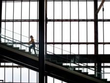 Ook concurrentie vol lof over de architecten  van de Tilburgse LocHal: 'Mega indrukwekkend'