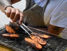 Wildbarbecueën in Den Haag mag, maar doe het veilig