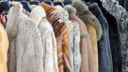 San Francisco verbiedt verkoop van nieuwe pels