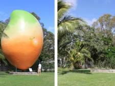 Dieven stelen Australische 'mega mango'