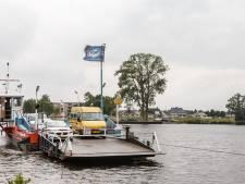 Zieke populieren bij veerpont Genemuiden zijn niet te redden
