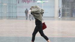 Plaatselijk rukwinden en véél regen op komst: 1722 geactiveerd, festival in Gent afgelast, steden sluiten bossen en parken