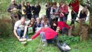 Paddenstoelenwandeling in het Heidebos