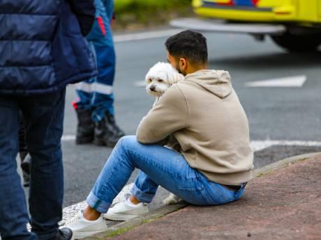 Aanrijding tussen twee Volkswagens in Apeldoorn: hondje schiet in stress