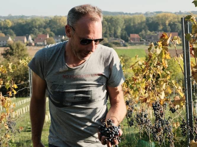 """Hageland levert eerste Belgische wijn ooit op kaart van beste restaurant ter wereld: """"Binnenkort worden we niet meer over het hoofd gezien als wijnland"""""""