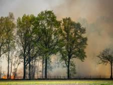 Flinke natuurbranden in Brabant, Limburg en Overijssel: camping en manege ontruimd