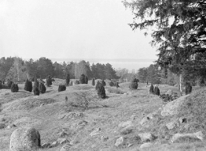 Een foto uit 1925 van de Vikingbegraafplaats bij het Zweedse Birka.