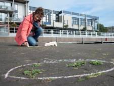Lydia ziet het liefst veel méér 'onkruid' op straat: 'Elk plukje groen lijkt te moeten verdwijnen'