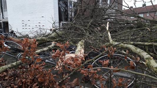 Een flinke boom is tegen de toegangsdeur van een flat gewaaid aan de Beethovenlaan in Doetinchem. Ook landde de boom op een paar fietsen.