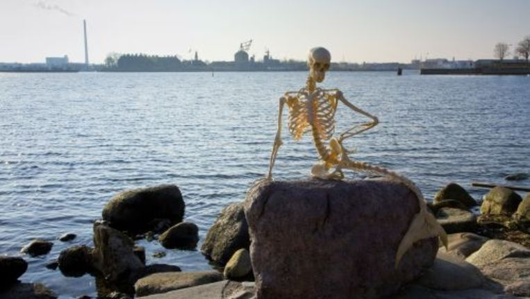 Het skelet in de haven van Kopenhagen. ANP Beeld