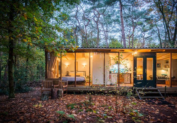 Veel toeristische huisjesverhuurders deden het afgelopen halfjaar heel goed, zoals deze cabin MaJa's Hideaway, een huisje in een bos van 6000 vierkante meter' bij Lieren.