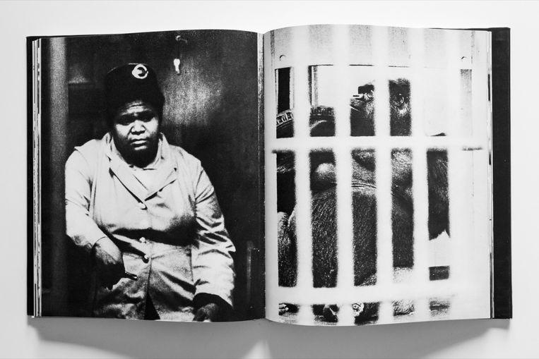 Werk die na ophef werd gecanceld: het fotoboek London van Martin Parr. Beeld Fotoboek London, Martin Parr