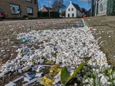 'Badr en Rico' ruimen piepschuimtroep in Den Hout op