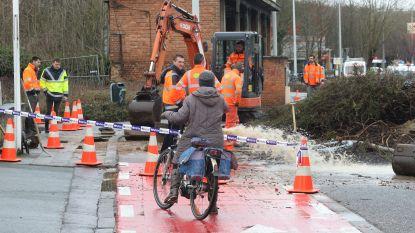 Gigantisch waterlek aan Sportkot: deel Tervuursevest voor rest van het weekend afgesloten door wateroverlast