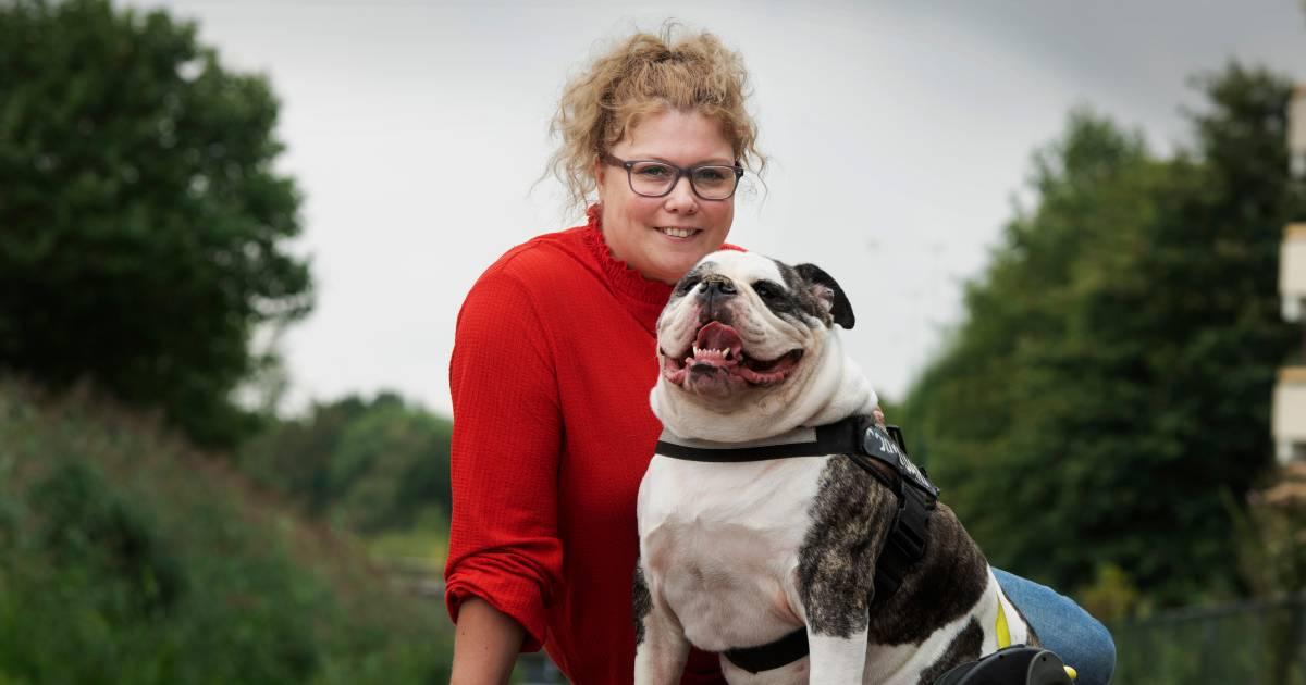 Hond Diesel (5) wordt bijna geroofd, maar een harde beet jaagt dieven op de vlucht: 'Blijf van mijn hond af'