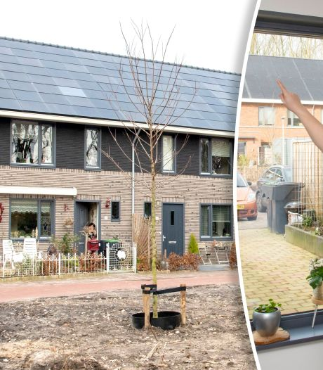 Huurkorting voor omstreden Slokkerwoningen in Ermelo stelt bewoners Driesprong niet gerust: 'Nogal karig'