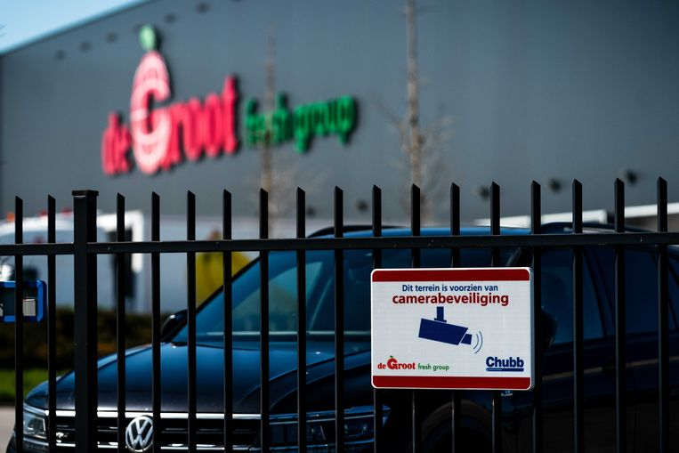 Camerabeveiliging bij fruitbedrijf De Groot in Hedel. Het bedrijf staat centraal in een omvangrijke drugs- en afpersingszaak.  Beeld ANP