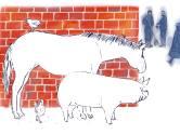 Ivermectine: waarom willen mensen geen vaccin en wel 'paardenmiddel' van een boer uit Ingen? 'Het is een geloof'