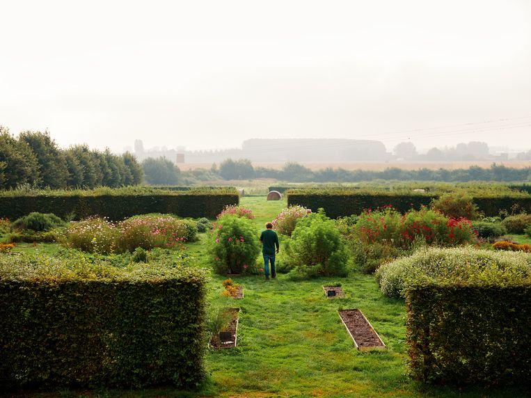 Sang-Hoon Degeimbre: 'We zijn slaven van de natuur, denk ik als ik onze tuinier zie  rondkruipen. We gebruiken geen pesticiden, dus hij brengt de helft van zijn leven op zijn knieën door. Voorovergebogen.' Beeld Hannes Vandenbroucke