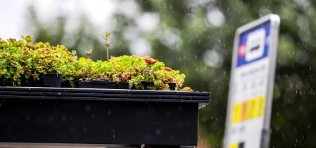 Plantjes het dak op voor verkoeling en voor opvangen regenwater en Gorinchem betaalt mee