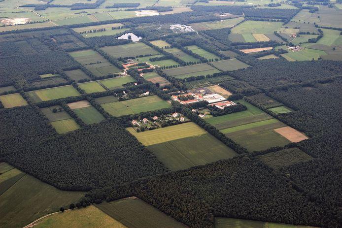 De kaarsrechte dreven en ordelijke boerderijtjes tekenen het landschap van Wortel-Kolonie.
