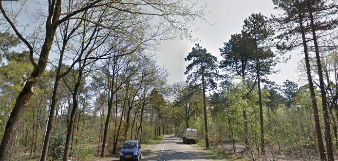 Een idyllisch plaatje. Tegenwoordig een zeldzaam beeld. Door de lockdown is De Heide ook tijdens de winter drukbezocht.