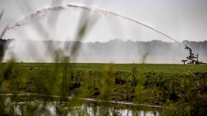 Grondwaterstanden in Vlaanderen vaak laag voor tijd van het jaar