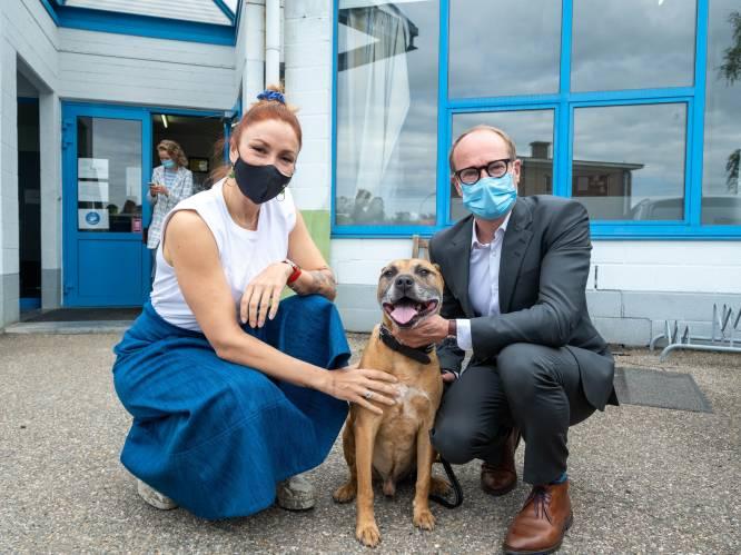 """Natalia en minister Weyts vragen honden- en kattenbaasjes met aandrang: """"Check je chip!"""""""