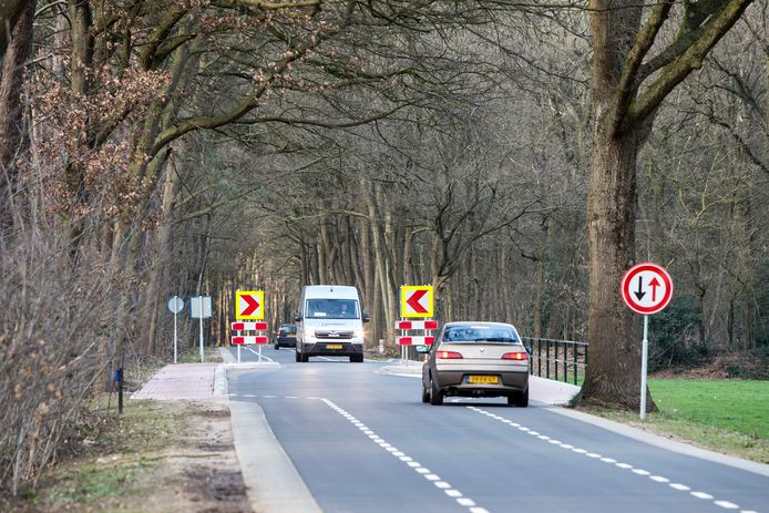 De onlangs aangelegde chicanes aan de Wildenborchseweg nadat omwonenden over de verkeersveiligheid hadden geklaagd.