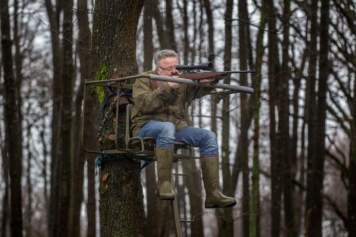 Soerendonk - Jager Ploos van Amstel in gebied de Goorloop waar veel zwijnen zijn