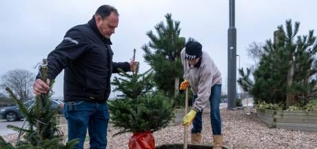 Kerstbomen verbrand na waarschuwing van 'gelovige'