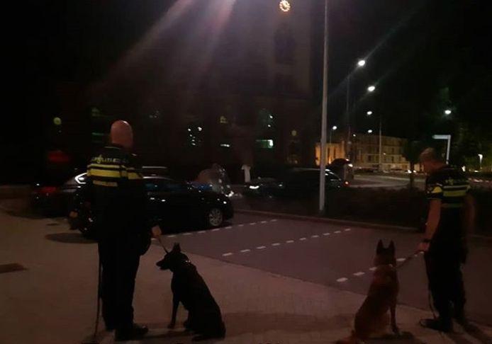 De politiehonden Levi en Joekel kwamen vannacht ook in actie in Zeist.