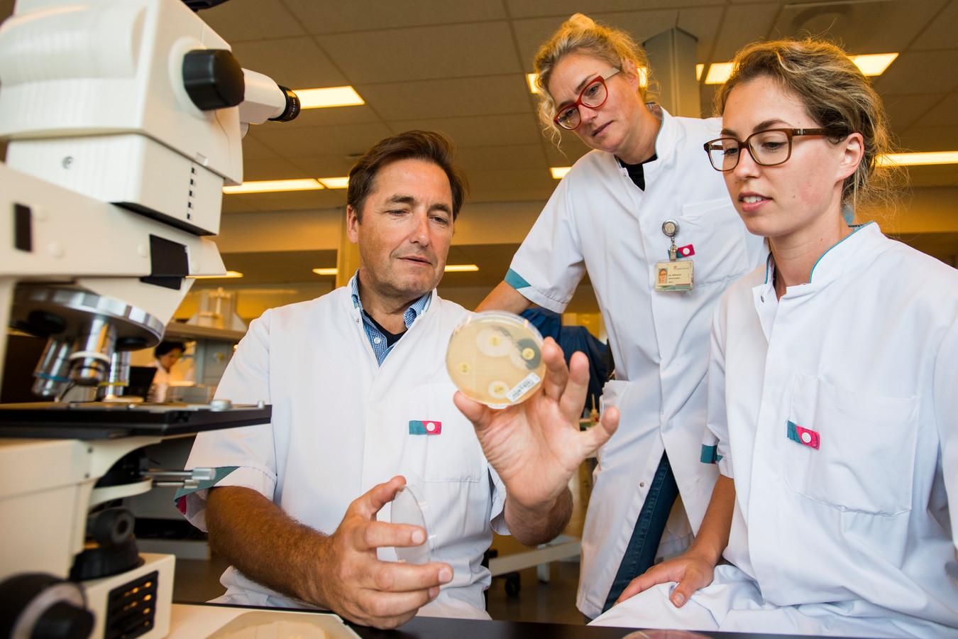 Jan Kluytmans bekijkt met twee collega's met Ina Willemsen (midden) en Bregje Mutsaers een kweek in het laboratorium (archieffoto).