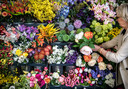 Hoe gevarieerder het boeket, hoe langer leuk, toont kunstbloemist Ellen Hofker. Variatie krijg je door verschillen te maken in hoogte, kleur en soorten takken. Doe groen bij een boeket om de afzonderlijke takken samen te brengen en er een geheel van te maken.