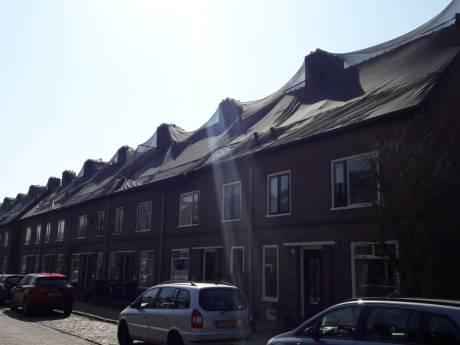 Huismussen en vleermuizen in Zutphense buurt dreigen renovatie te verstoren
