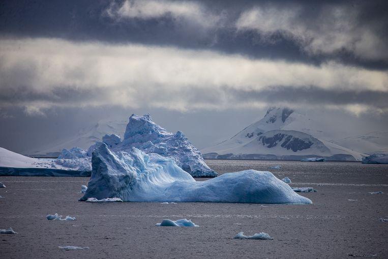 Een drijvende ijsberg in Antartica. Beeld Getty