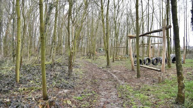 """Tientallen bomen moeten gekapt in Kleibos: """"Wel zorgen dat het een leuke plek blijft"""""""