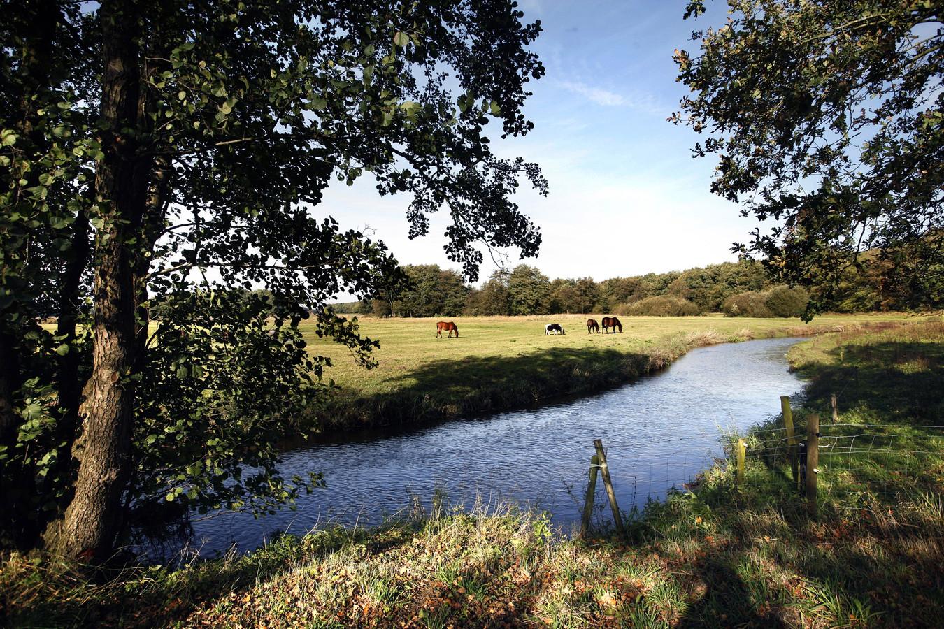 Het natuurgebied Schipborg in Drenthe.