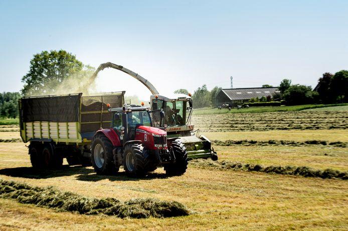 Loonwerkersbedrijven hebben ondanks corona veel werk gehad. Zowel bij particuliere tuinen als bij de boeren, nu het weer natter is. Loonwerkers van Loon- en Grondverzetbedrijf Boschloo uit Gorssel hakselen een veld van een boer uit Eefde.