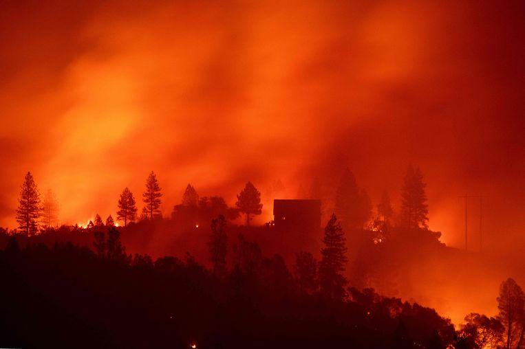 De recente bosbranden in Californië hebben rechtstreeks te maken met de klimaatverandering. Beeld AFP