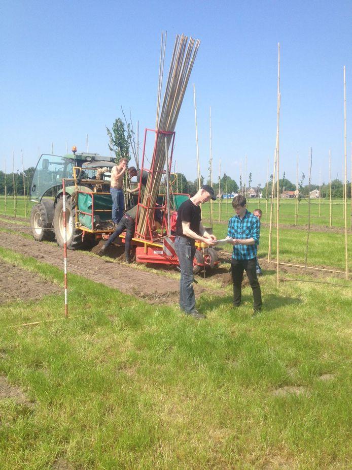 De aanplant van bomen in de Udenhoutse wei.